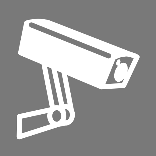 PROFESSIONAL VIDEO SECURITY